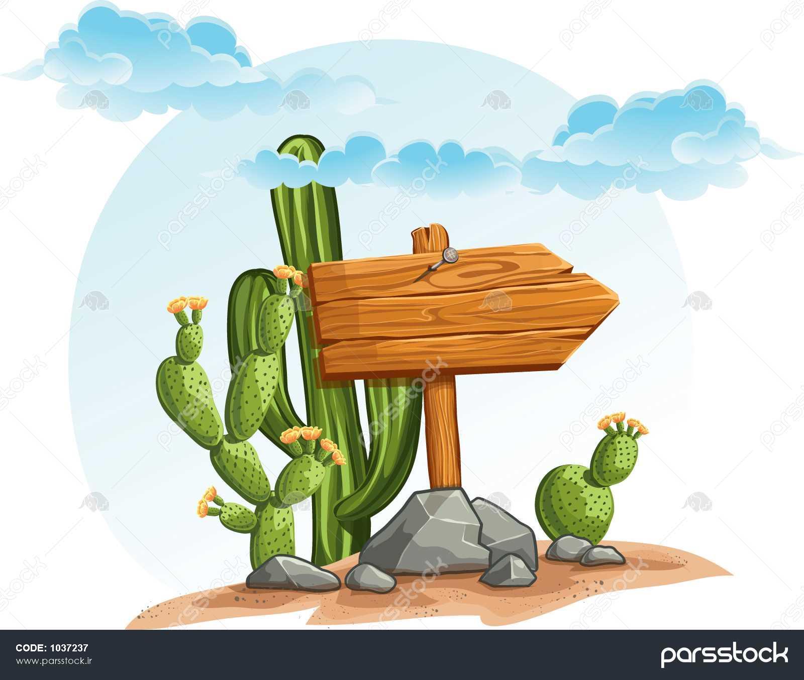 images of desert cactus flower
