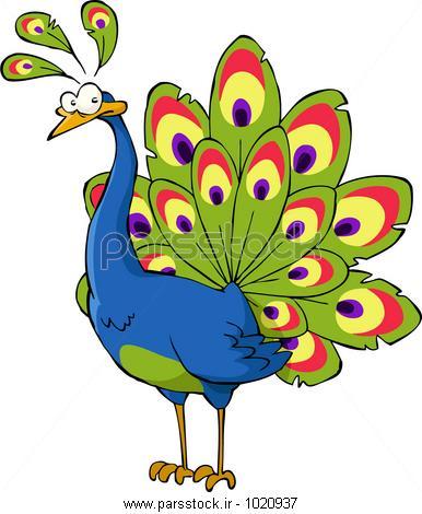 نتیجه تصویری برای حکایت طاووس و دانشمند