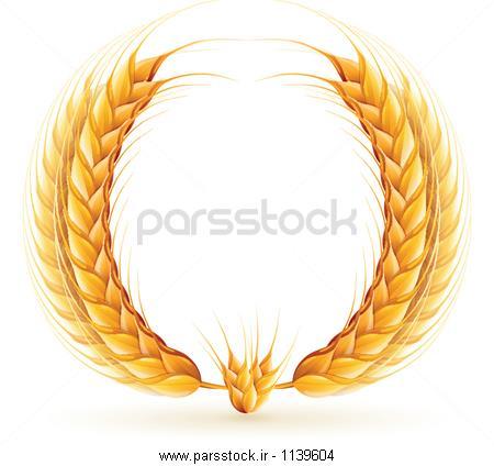 علامت عکس با کیفیت علامت و وکتورهای علامت پارس استاک | شاتر استوک ...تاج گل گندم
