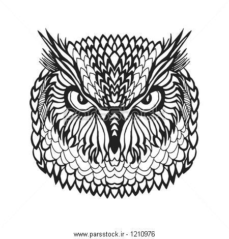 zentangle سر عقاب جغد تلطیف پرندگان دست سیاه سفید کشیده ابله ...zentangle سر عقاب جغد تلطیف پرندگان دست سیاه سفید کشیده ابله ilration قومی الگو برداری آفریقا