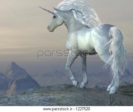 عکس اسب تک شاخ کارتونی