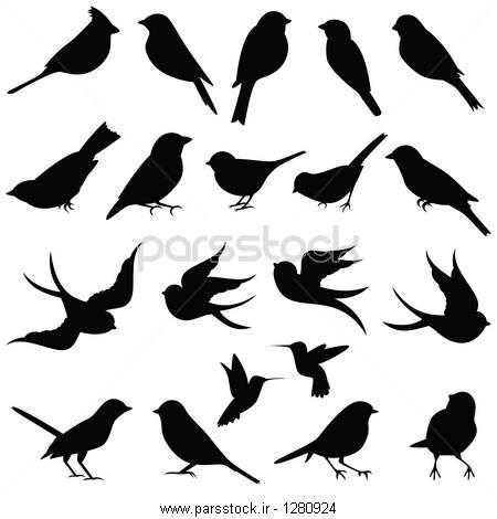 مجموعه وکتور پرنده سایه ها وکتور لایه باز 118523296 : پارس ...