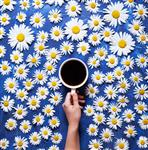 Floral summer background A mug of coffee in a woman
